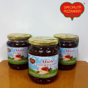 Miele fiori di eucalipto-0