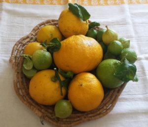 Cestino con bergamotti