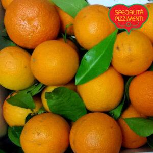 arance-di-calabria