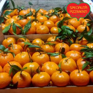 Mandarini di Calabria