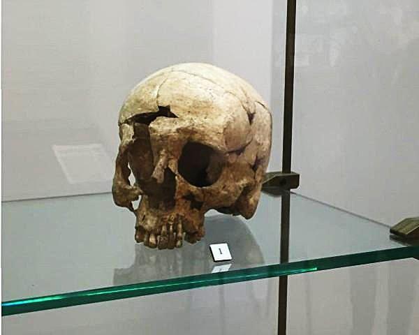 Cranio di Carìa