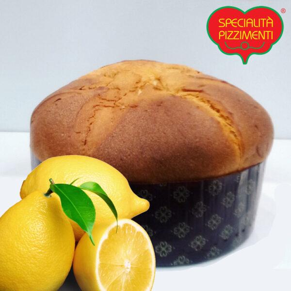 Panettone al Limone artigianale